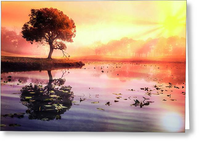 The Tree On The Point Greeting Card by Debra and Dave Vanderlaan