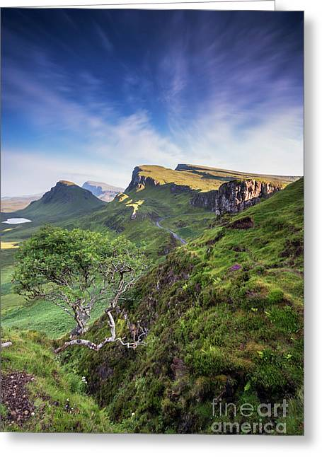 The Trotternish Tree Greeting Card