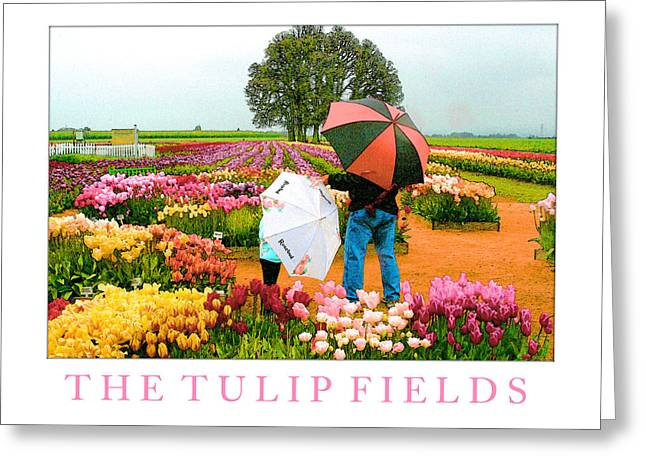 The Tulip Fields Greeting Card by Margaret Hood