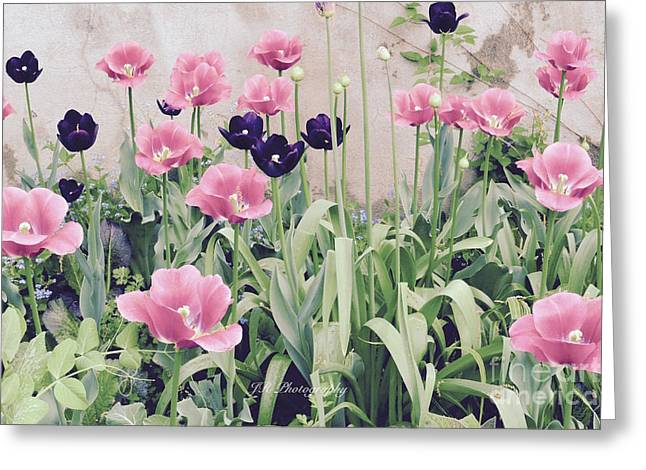 The Tulip Garden Greeting Card by Jeannie Rhode
