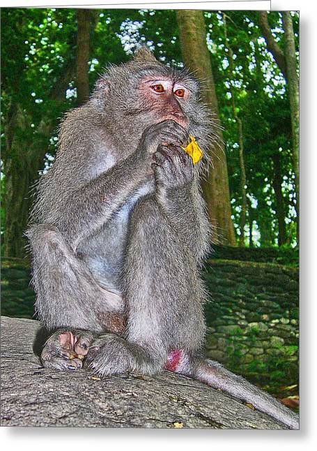The Ubud Monkey Forest. Bali. Greeting Card by Andy Za