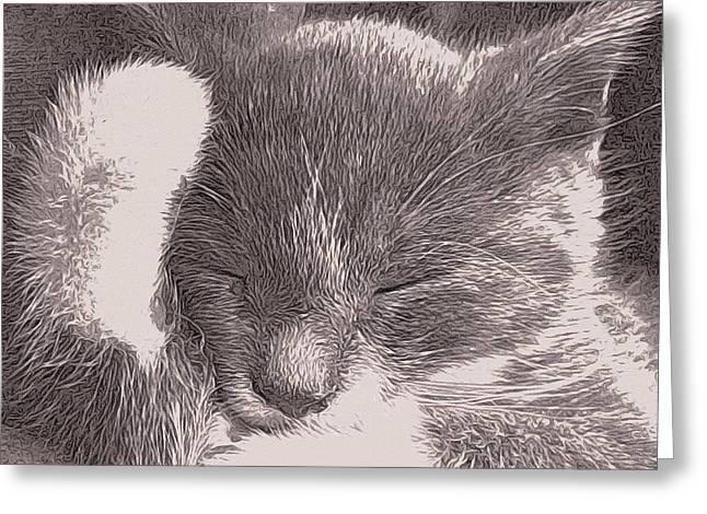 The Unbearable Cuteness Of Kitten Greeting Card