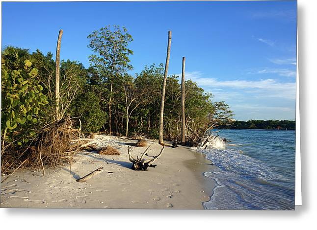 The Unspoiled Beauty Of Barefoot Beach In Naples - Landscape Greeting Card