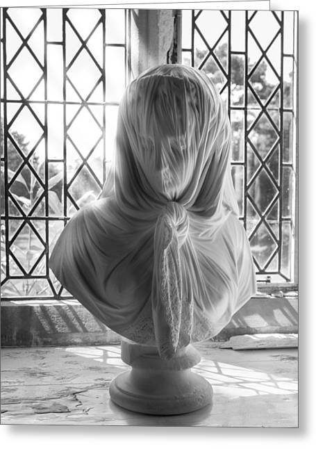 Greeting Card featuring the photograph The Veiled Lady by Stewart Scott