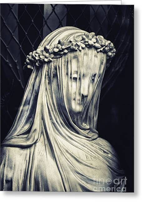 The Veiled Maiden Greeting Card by Tim Gainey
