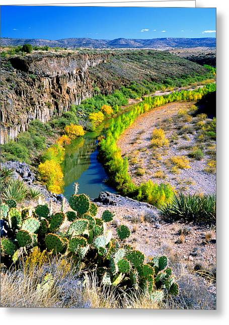 The Verde River Greeting Card