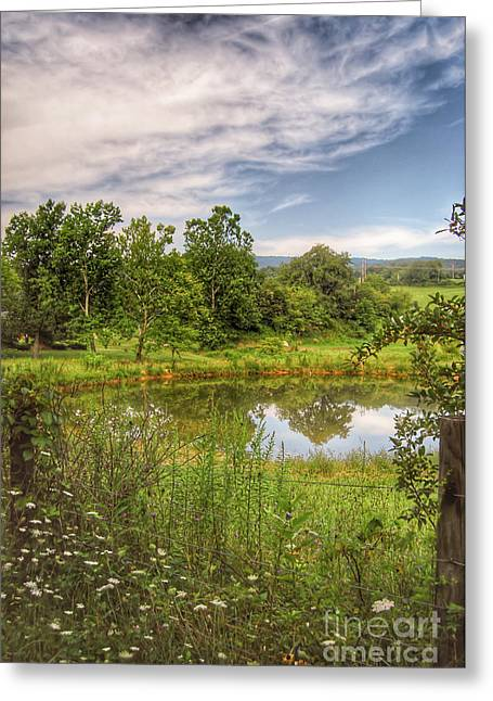 Greeting Card featuring the photograph The View Along Deerfield Trail by Kerri Farley