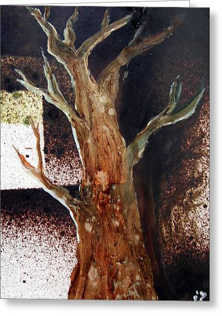 Window Of Life Mixed Media Greeting Cards - The View From A Tree Greeting Card by Alma Yamazaki