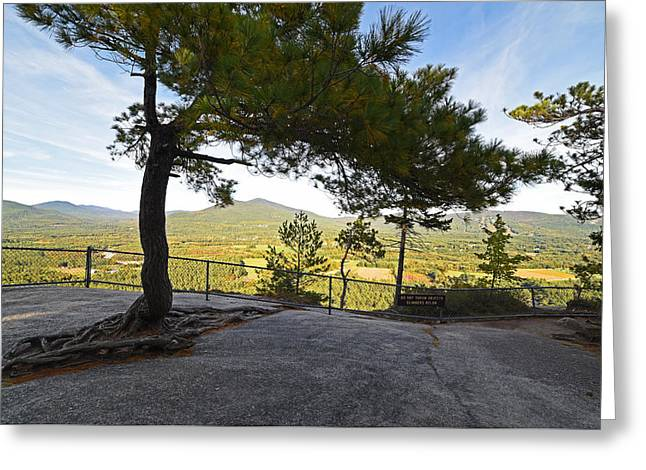 The View From Cathedral Ledge North Conway Nh Greeting Card by Toby McGuire