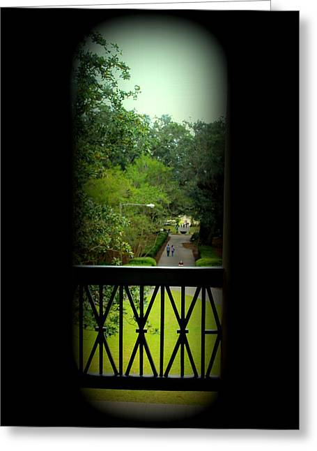 The View Out Back Of Oak Alley Plantation From 2nd Floor Greeting Card by Anita Hiltz