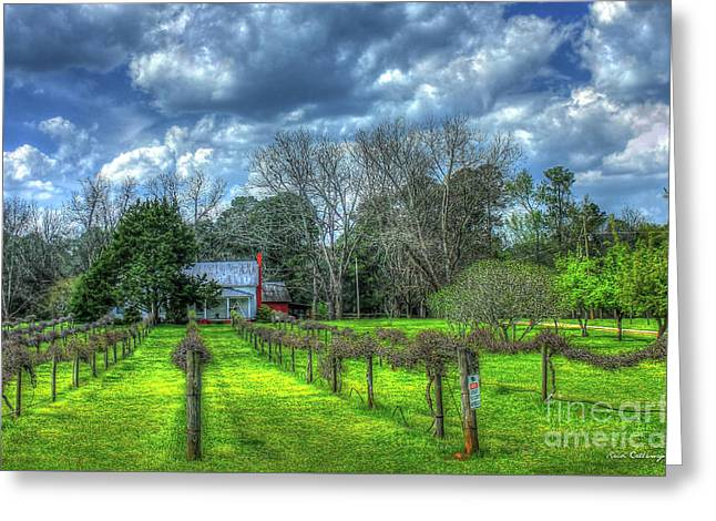The Vineyard House Landscape Photography Art Greeting Card by Reid Callaway