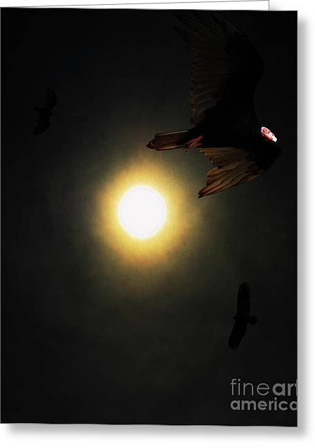 The Vultures Have Gathered In My Dreams . Portrait Cut Greeting Card by Wingsdomain Art and Photography