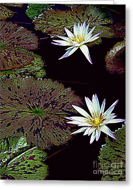 The Water Garden Greeting Card