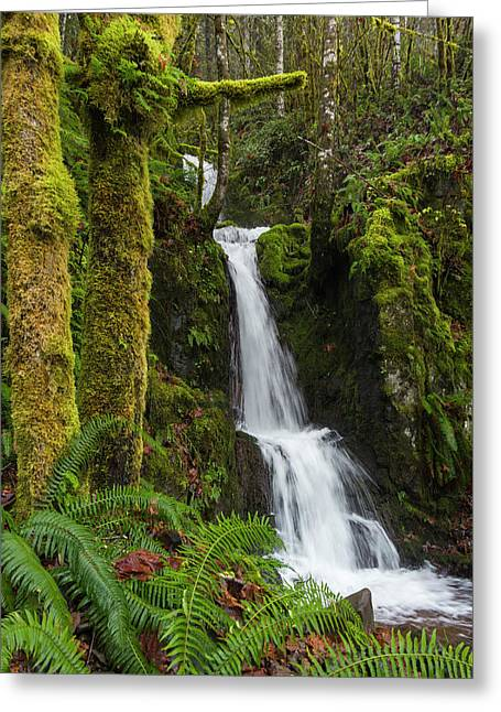 The Water Staircase Greeting Card