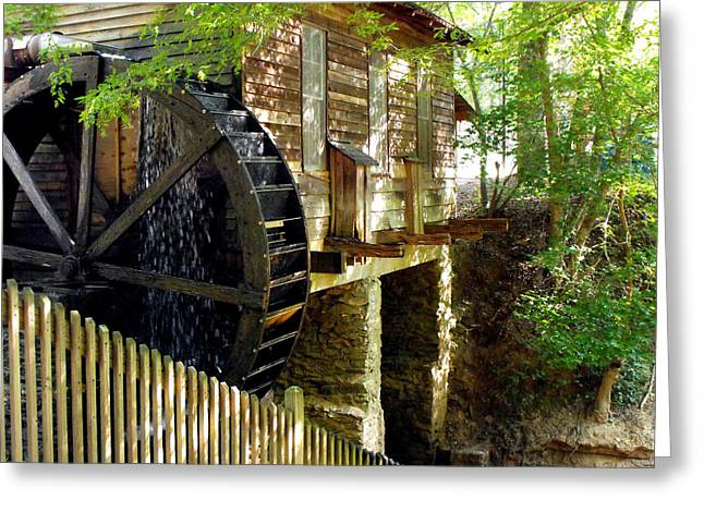 The Water Wheel Greeting Card by Eva Thomas