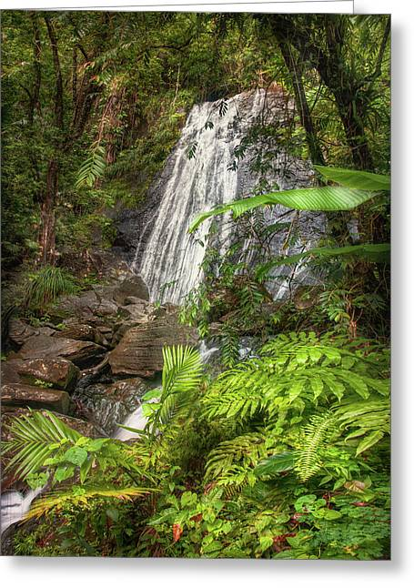Greeting Card featuring the photograph The Waterfall by Hanny Heim