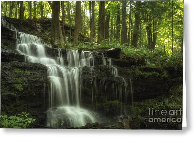 The Waterfall In The Forest Greeting Card