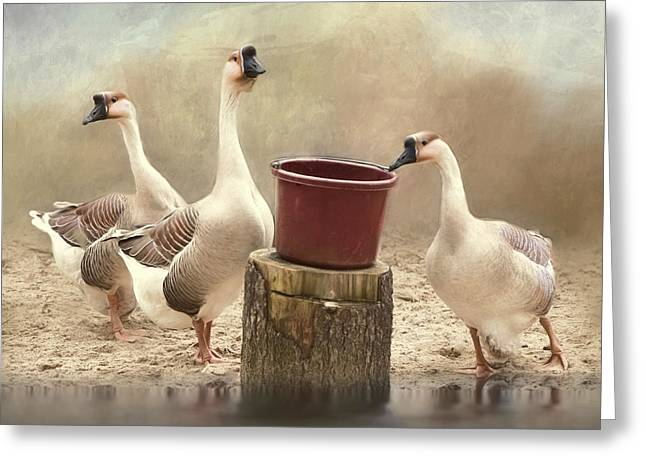 Greeting Card featuring the photograph The Watering Hole by Robin-Lee Vieira