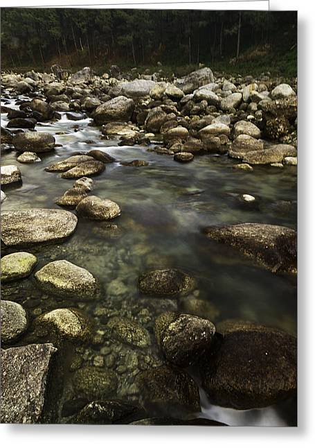 The Waters Flow Greeting Card by Rajiv Chopra
