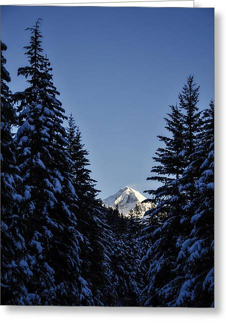 The Wedge Through The Trees Greeting Card by Pelo Blanco Photo