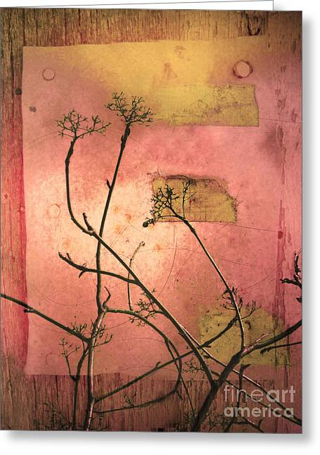 The Weeds Greeting Card by Tara Turner
