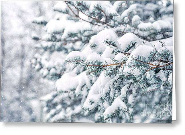 The Weight Of Winter Greeting Card