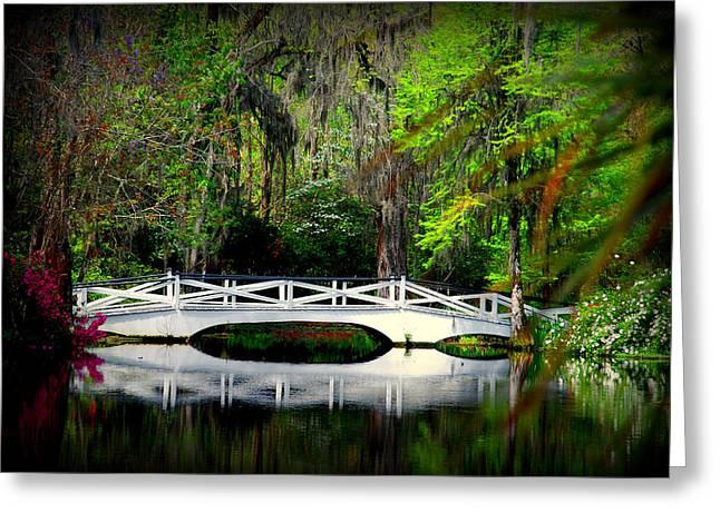 The White Bridge In Magnolia Gardens Sc Greeting Card