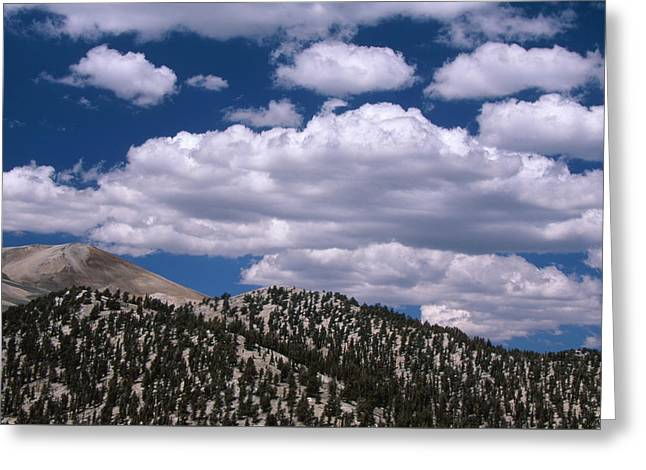 The White Mountains Greeting Card