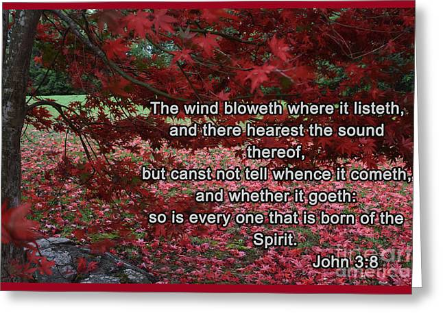 The Wind Bloweth Greeting Card by Christal Randolph
