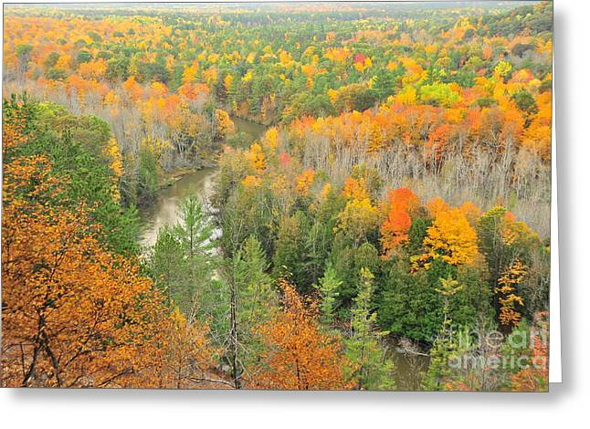 The Winding Manistee River Greeting Card