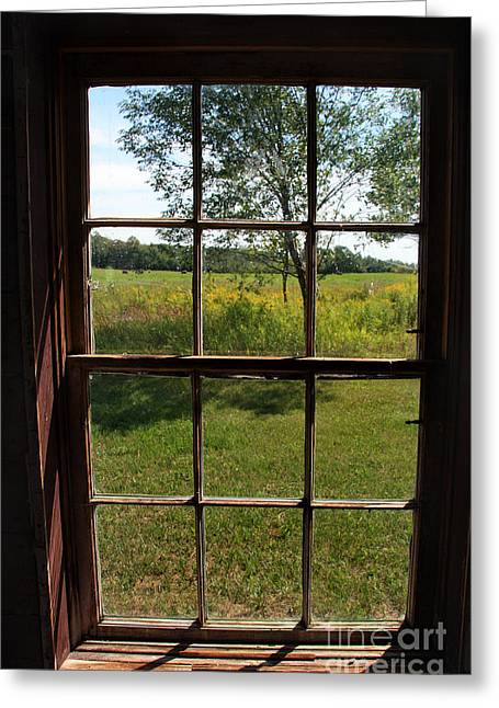 Greeting Card featuring the photograph The Window 2 by Joanne Coyle