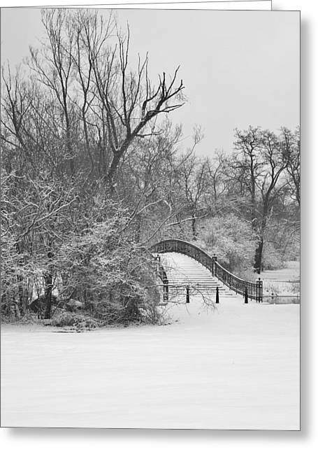 The Winter White Wedding Bridge Greeting Card