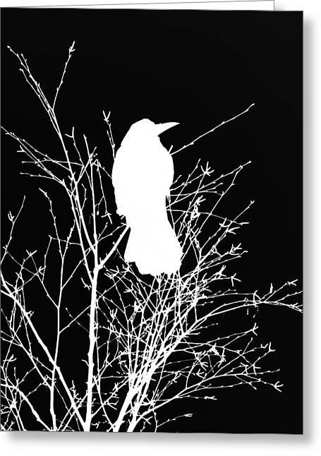The Wisdom Of Crow Greeting Card