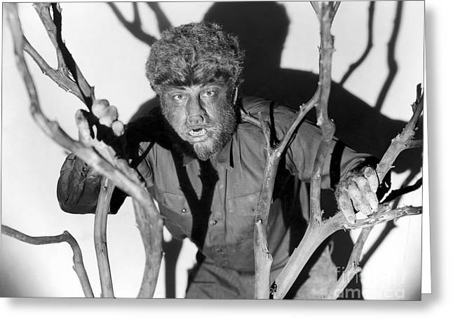 1941 Movies Greeting Cards - The Wolfman, 1941 Greeting Card by Granger