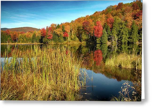 The Wonder Of Autumn Greeting Card by Janet Ballard