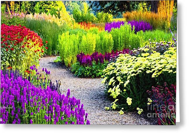 The Wonders Of A Late Summer Garden Greeting Card