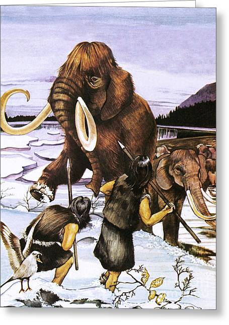 The Woolly Or Siberian Mammoth Greeting Card by Susan Neale