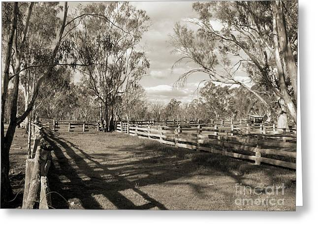 Greeting Card featuring the photograph The Yards by Linda Lees