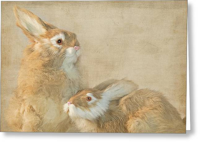 The Year Of The Hare Greeting Card