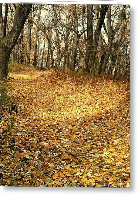 The Yellow Leaf Road- Version II  Greeting Card by Scott D Van Osdol