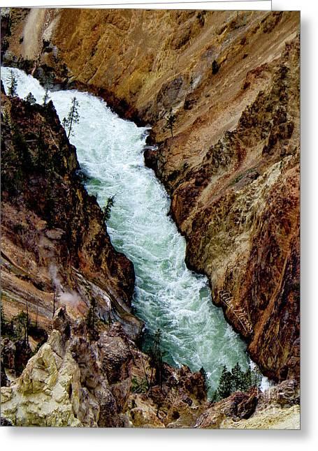 The Yellowstone Greeting Card