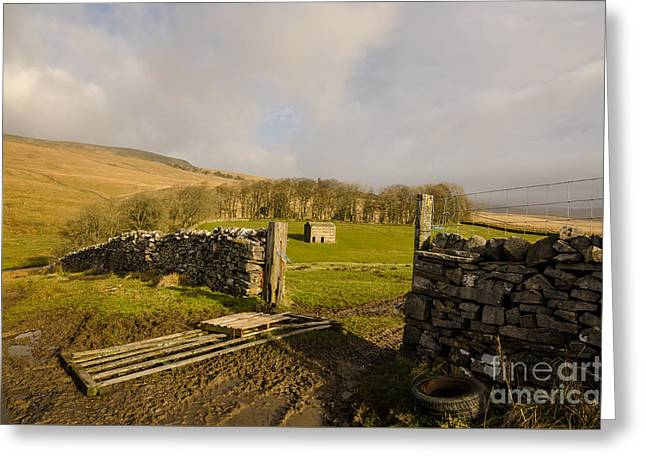 The Yorkshire Dales Greeting Card by Nichola Denny