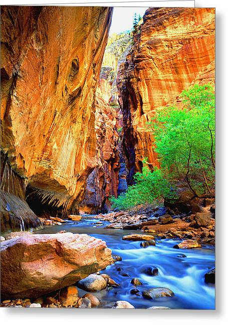The Zion Narrows Greeting Card