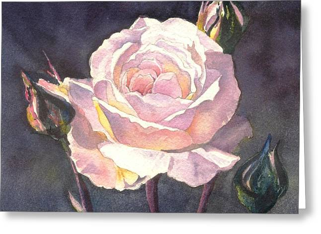 Thea's Rose Greeting Card by Sandra Phryce-Jones