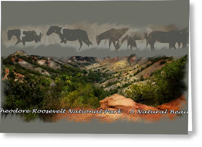 Theodore Roosevelt National Park Greeting Card