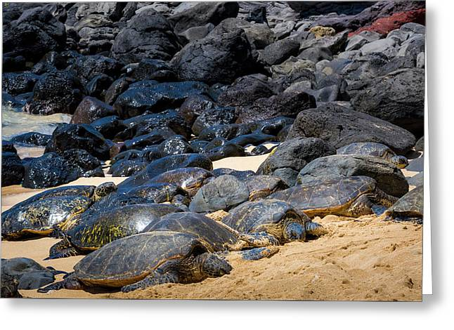 Greeting Card featuring the photograph There Has Got To Be More Room On This Beach  by Jim Thompson