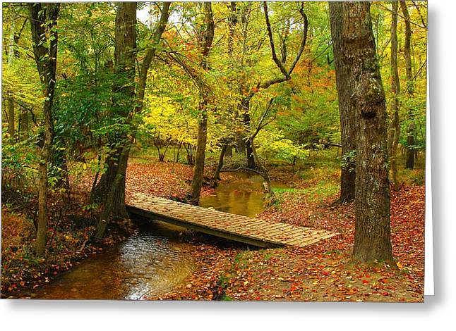 There Is Peace - Allaire State Park Greeting Card