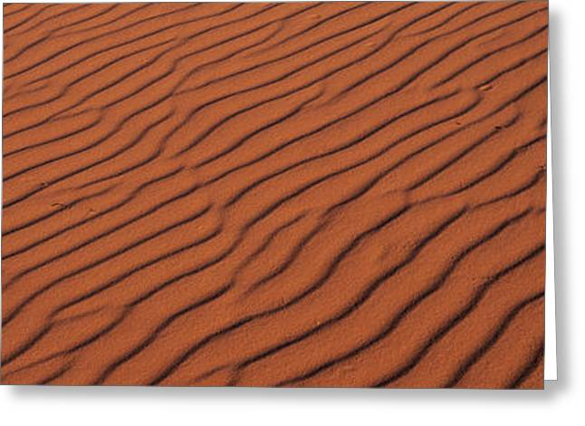 These Are The Pink Sand Dunes In Coral Greeting Card
