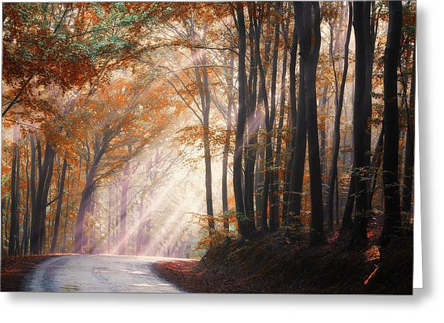 They Coming From Heaven Greeting Card by Janek Sedlar