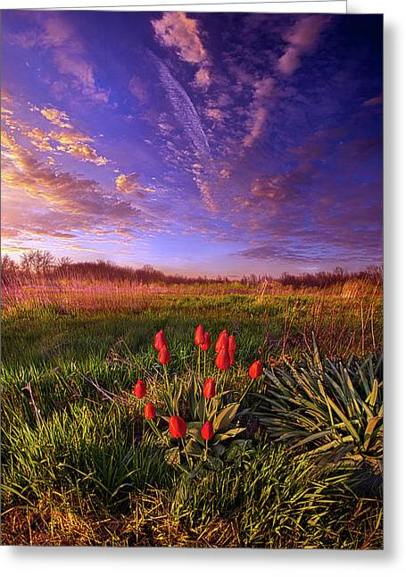 They Neither Toil Nor Spin Greeting Card by Phil Koch
